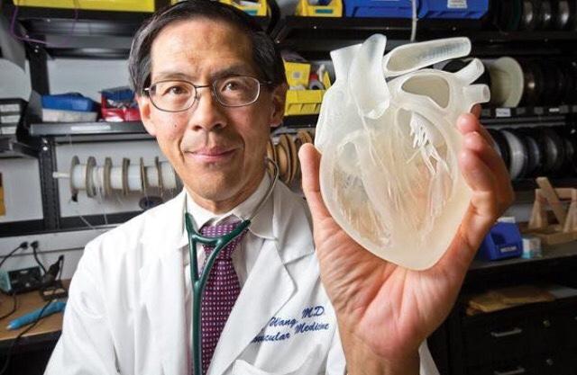 Este corazón no es funcional pero su estructura es exacta.
