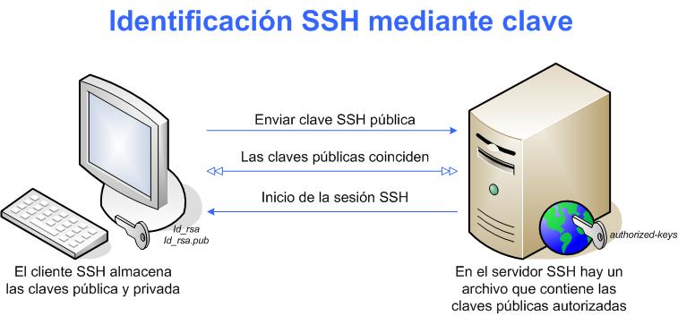 Mantén segura tu información con SSH