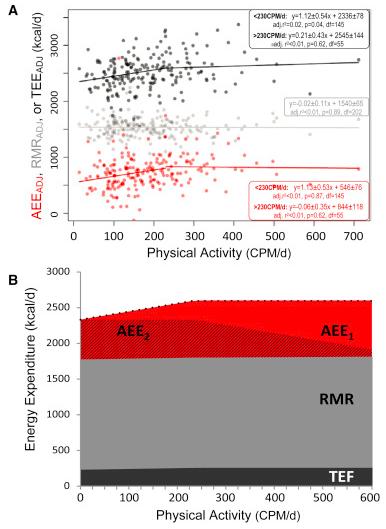 mas ejercicio no indica una mayor perdida de peso