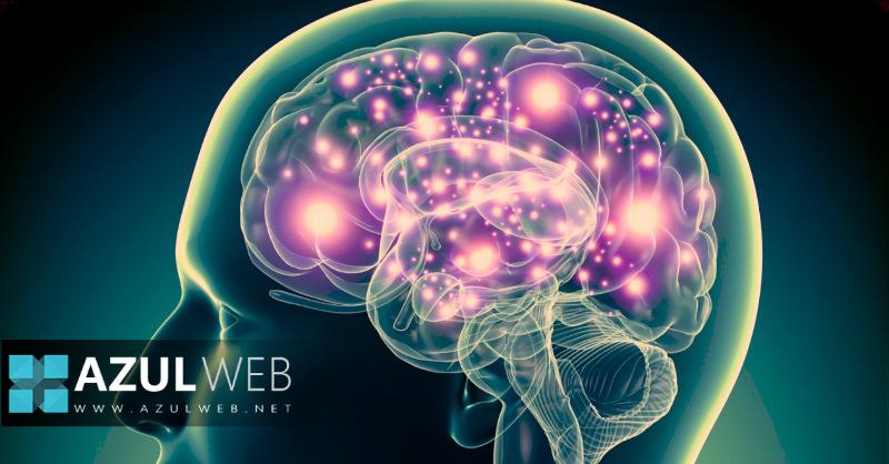 simular cerebro humano