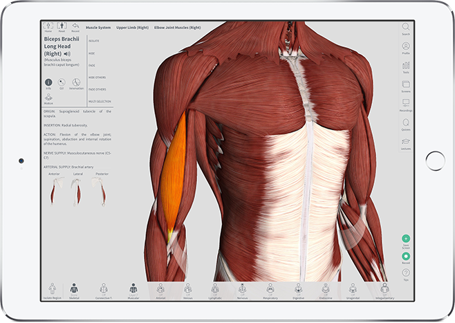 Anatomy Lab - iPad