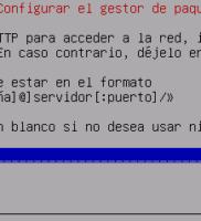 19.  Configuración proxy