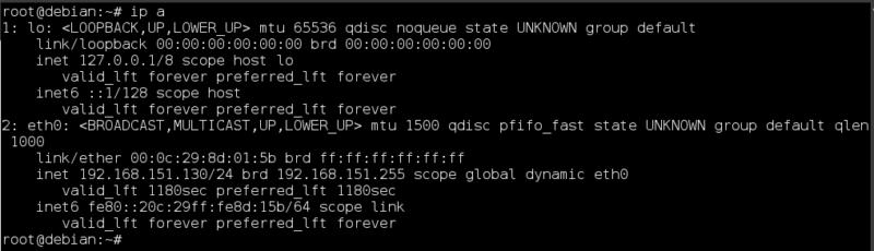 6. Conocer la IP en Linux Debian